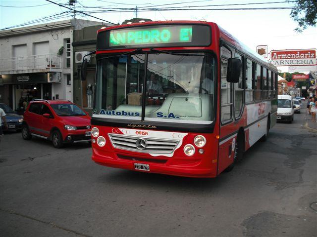 COLECTIVOS NUEVOS 005