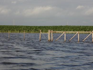 campo inundado