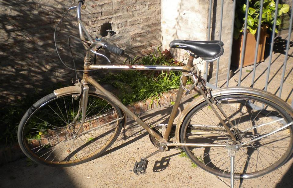 bicicleta molfesa