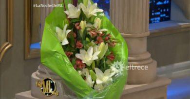 flores-mirtha