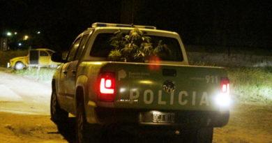 planta-marihuana-patru