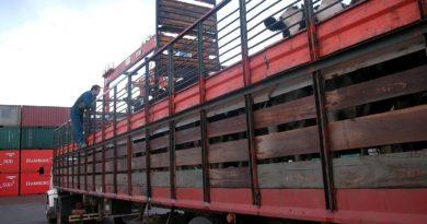 transporte-de-hacienda