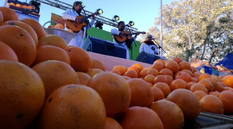 fiesta de la naranja