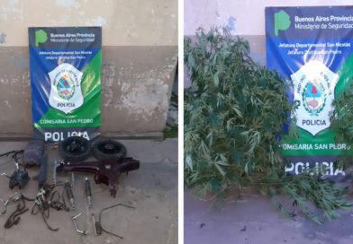 Allanamiento: Incautan motopartes y plantas de marihuana